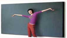 Velcro Fabric Bulletin Boards and Cork Bulletin Boards